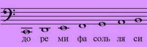 Большая октава ноты.